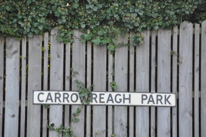 TD Carrowreagh