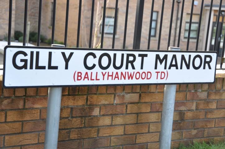 Ballyhanwood sign
