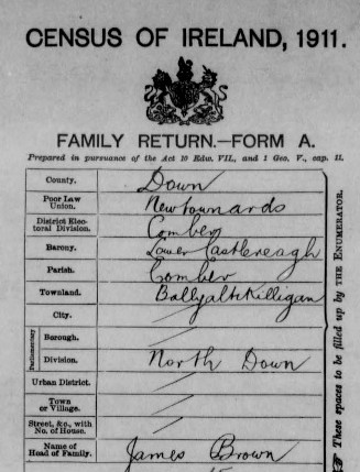 1911 census brown