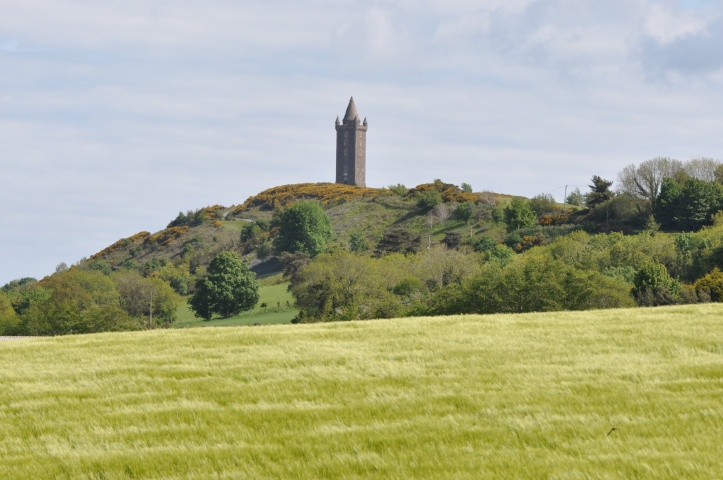 Ballycullen view to Scrabo