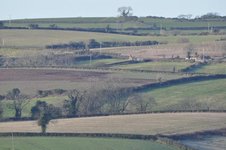 Ballyrussell fields
