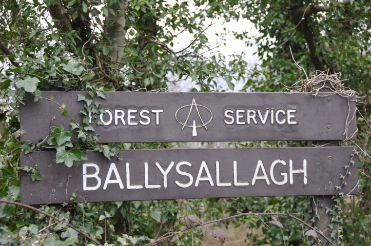 Ballysallagh Forest sign