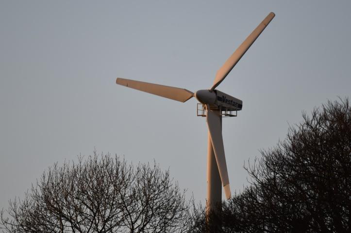 Dunlady windmill (1)