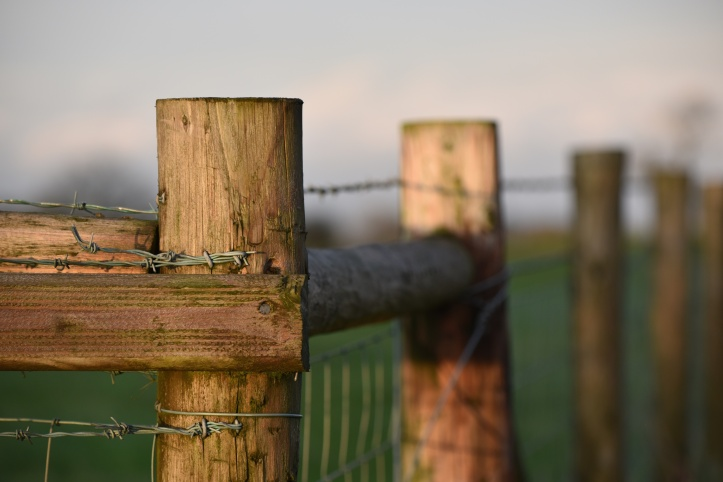 Dunlady wooden fence