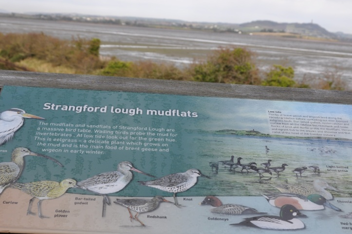mudflats sign
