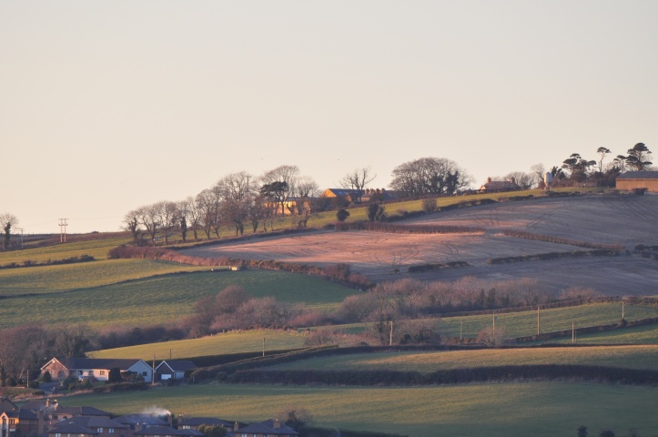 Ballyregan fields (1)