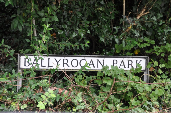 Ballyrogan Park sign