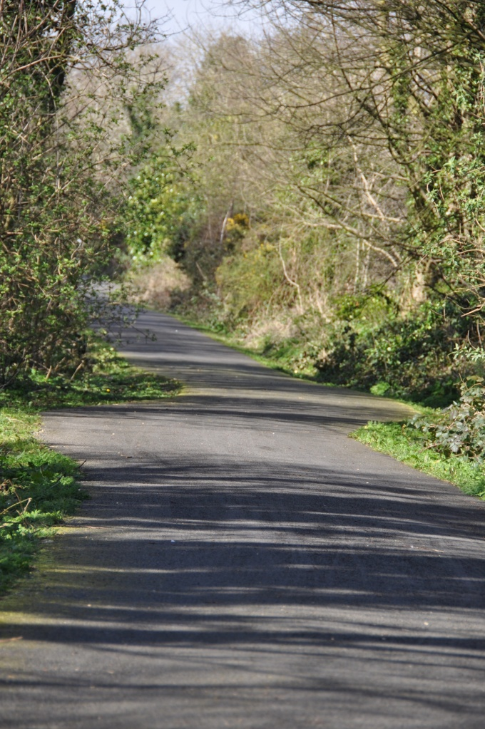 Greenway near Dundonald Station