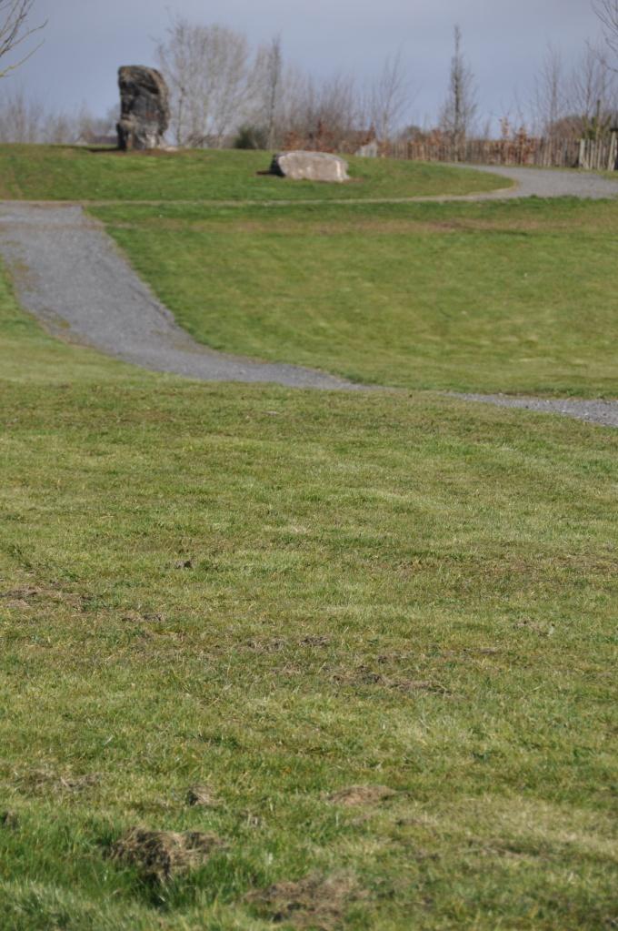 Longstone Meadow