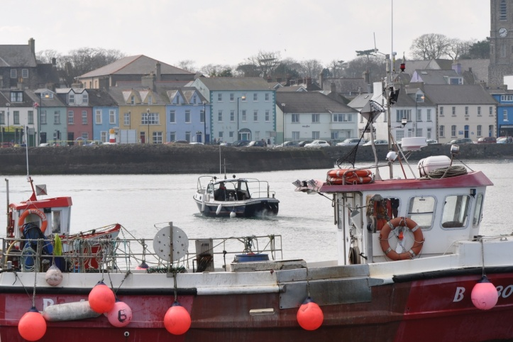 Donaghadee boat and houses