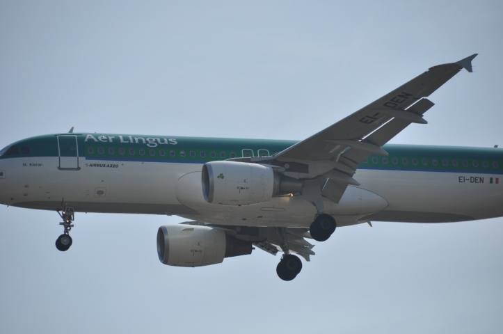 Are Lingus above Victoria Park