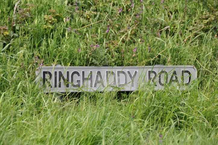 Ringhaddy Road sign