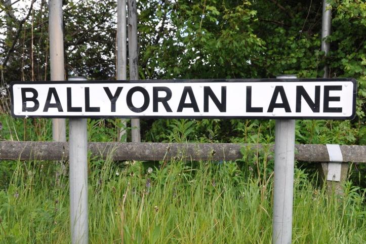 Ballyoran Lane