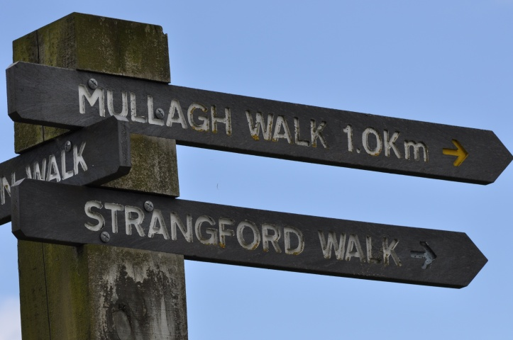 Delamont walk signs
