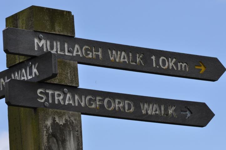 Delamont walk signs
