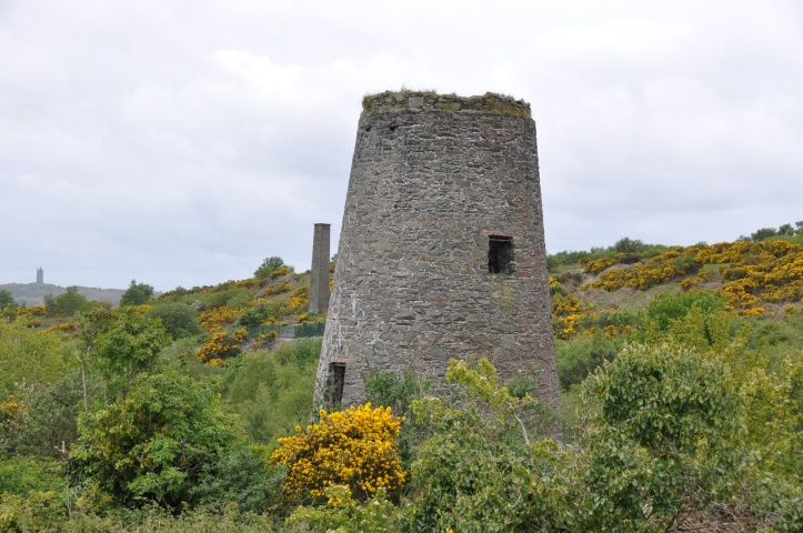Whitespots windmill and chimney and Scrabo