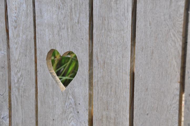 Ballyfrenis heart