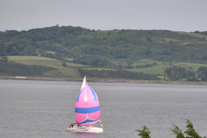 Killyleagh regatta 3