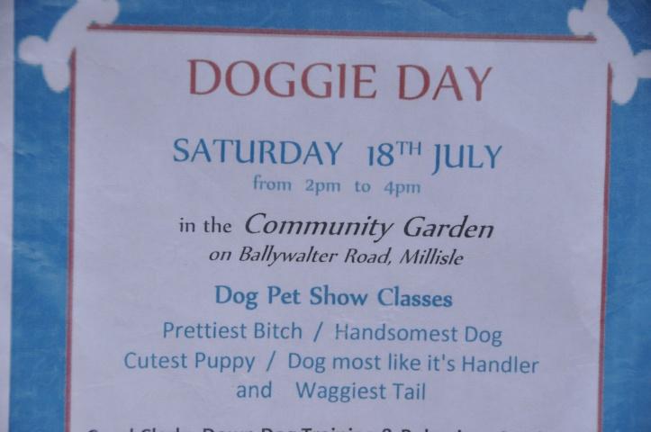 Millsle Doggie Day