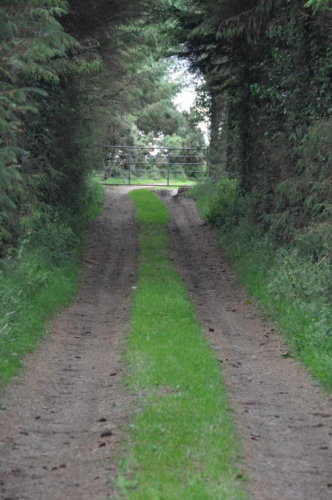 Unicarval lane