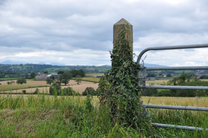 Castleaverry gatepost