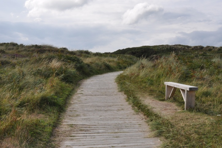Murlough nature reserve boardwalk