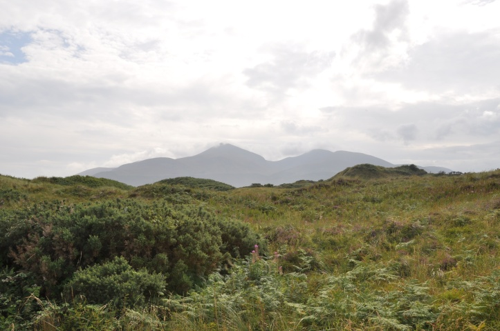 Murlough nature reserve