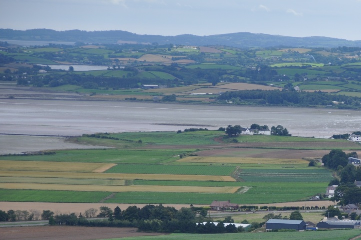Ringcreevy from Scrabo 2
