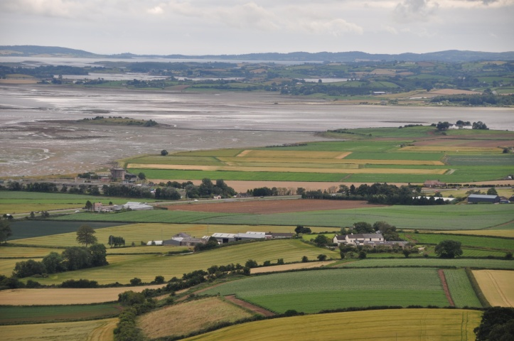 Ringcreevy from Scrabo