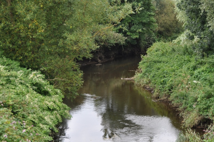 Comber River near Park Way