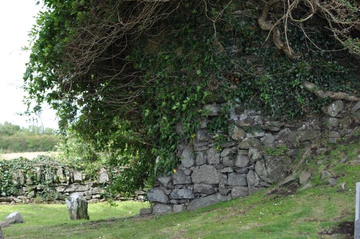 Killaresy graveyard in Kirkland overgrown