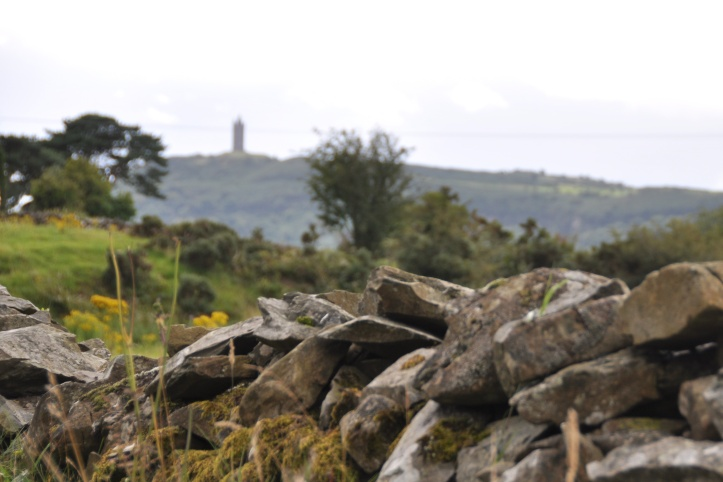 Mountain Road view of Scrabo and stone wall (1)