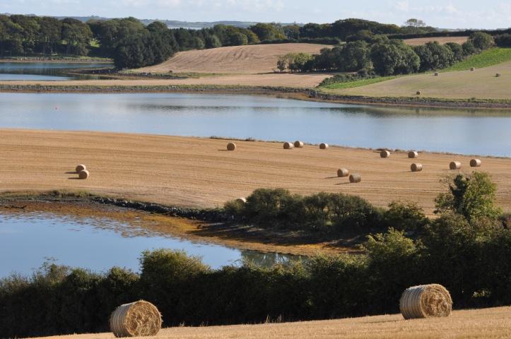 Quarterland farmland bales