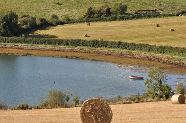 Quarterland farmland