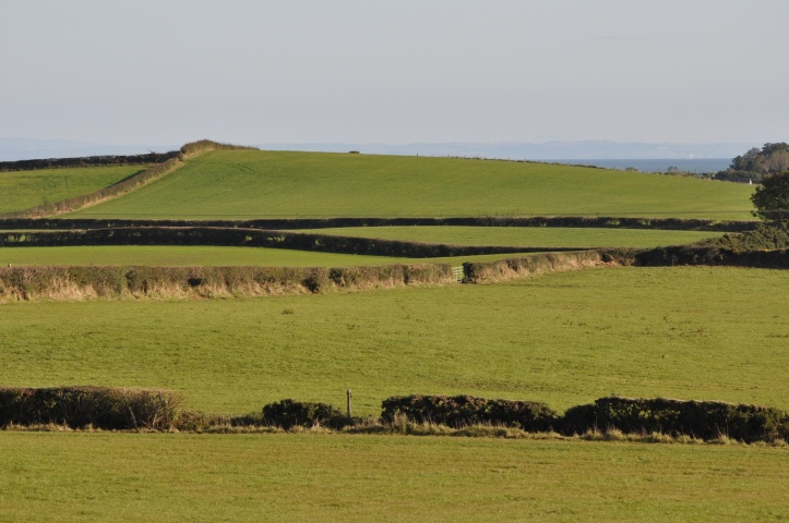 Craigboy fields