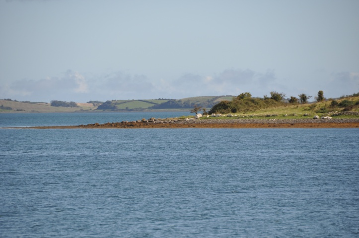 Island Taggart from Rathcunningham