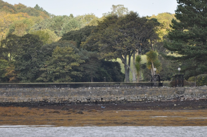 Simmy Island Rathcunningham