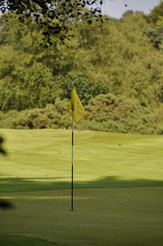 Clandeboye Golf club green