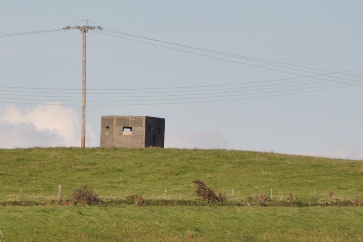 Templepatrick pillbox (1)