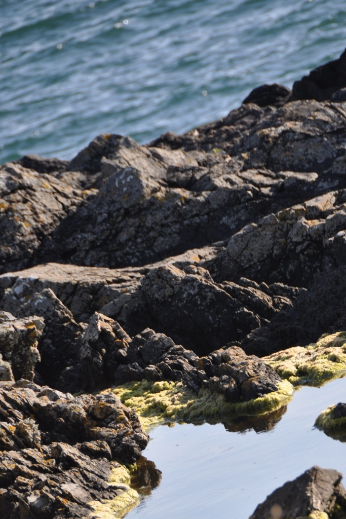 Templepatrick rockpool