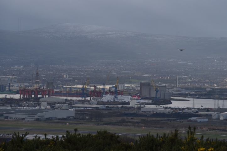 Belfast and kestrel from Redburn