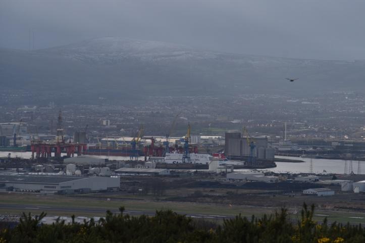 Belfast and kestrel from Redburn