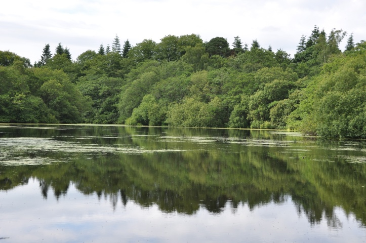 Lake on Clandeboye Way (1)
