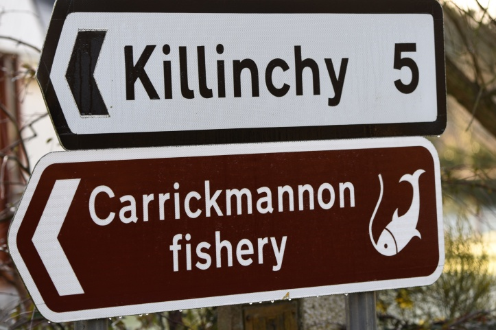 Carrickmannan trout fishery sign