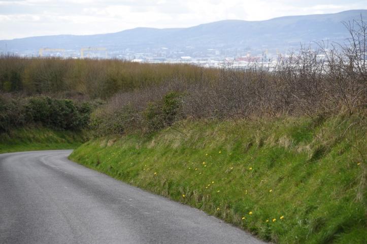 Creighton's Green Road