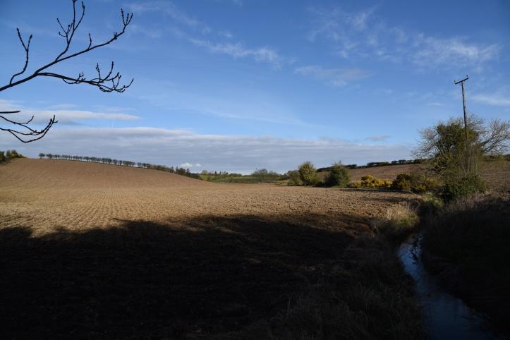Cunningburn river and fields