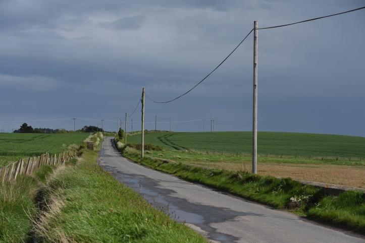 Ringneill Road