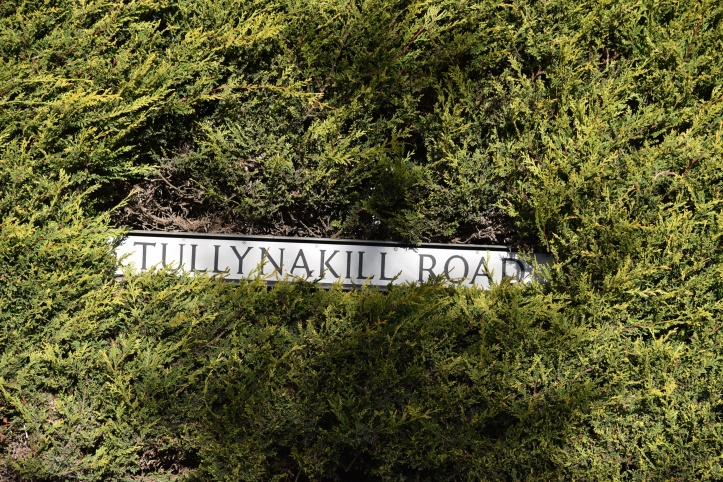 Tullynakill road sign