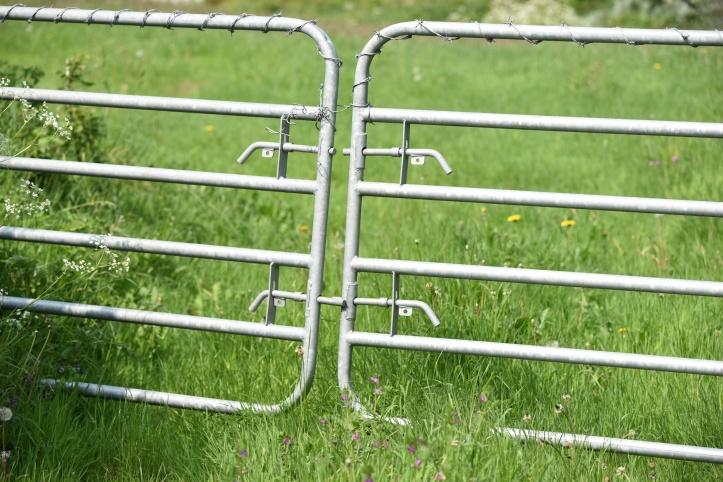 Gregstown gates