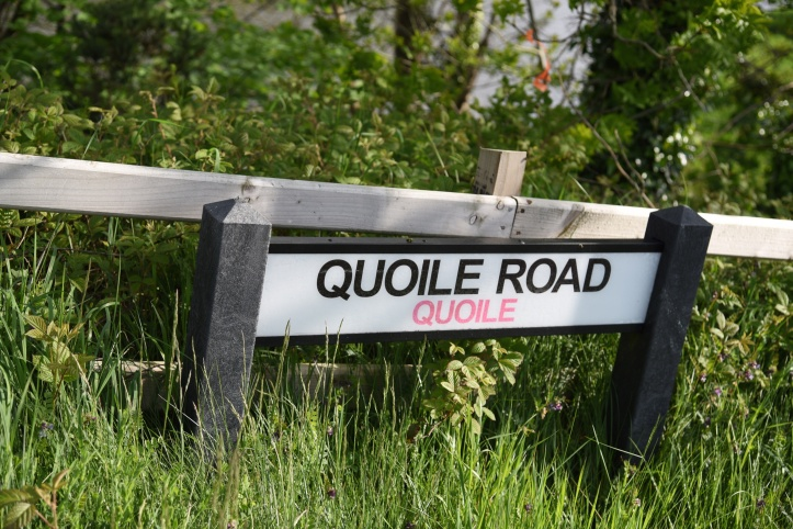 Quoile Road sign